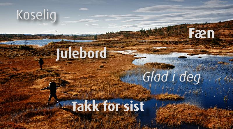 5-neprelozenych-norskych-slov-blog-0002-norsko-00